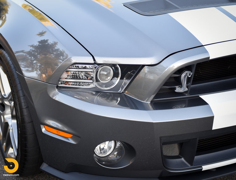 2013 Ford Shelby GT500-5.jpg