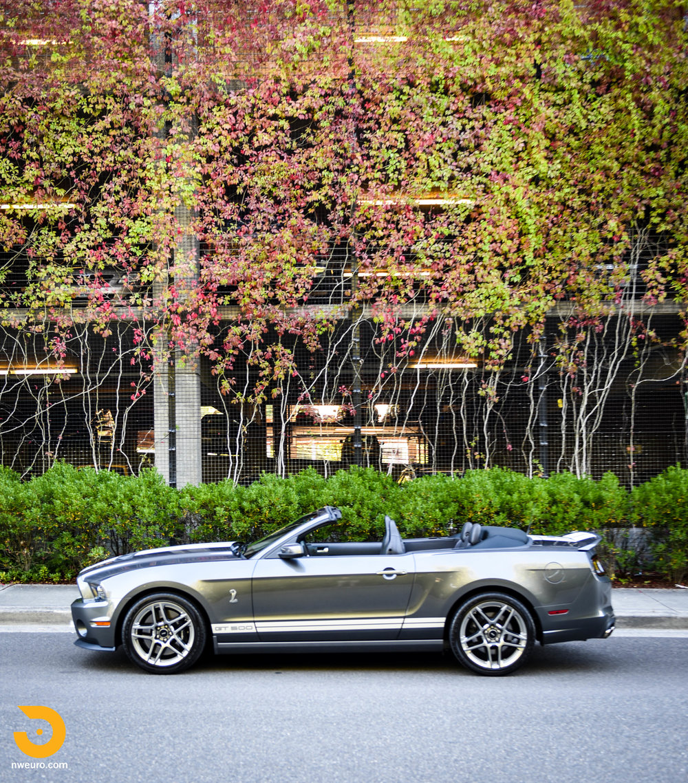 2014 Ford Shelby GT500 Convertible-40.jpg