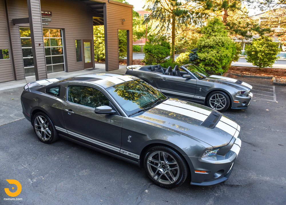 Ford Shelby GT500 Pair-2.jpg