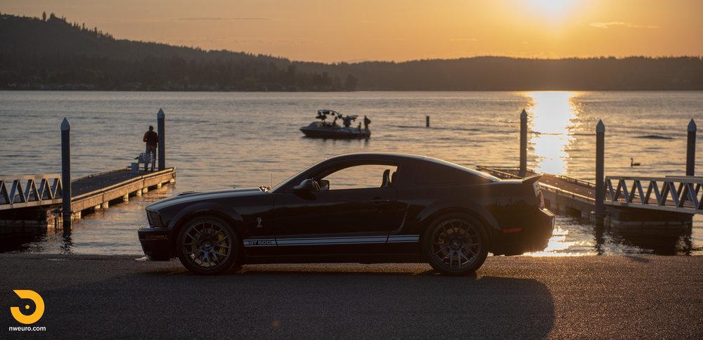 2009 Shelby GT500-46.jpg