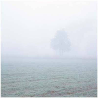 Carl Warner, Oblivion 09 (2009), lambda print, 92.5 x 92.5cm (framed), 75 x 75cm (unframed), edition of 5