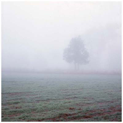 Carl Warner, In Non Being 5 (2009), lambda print, 47 x 46cm (framed), 30 x 30cm (unframed), edition of 7