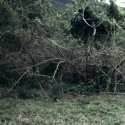 Carl Warner, Disturbance 15 (2007), type C photograph, 60 x 60cm framed, edition of 5