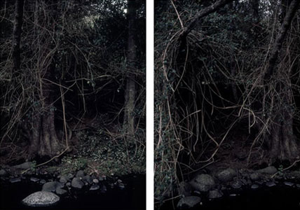 Carl Warner, Disturbance 08 (2007), type C photograph, 2 x (90 x 60cm), diptych framed edition of 5