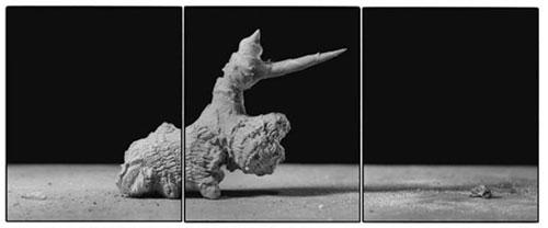 Joachim-Froese-Rhopography-41.jpg