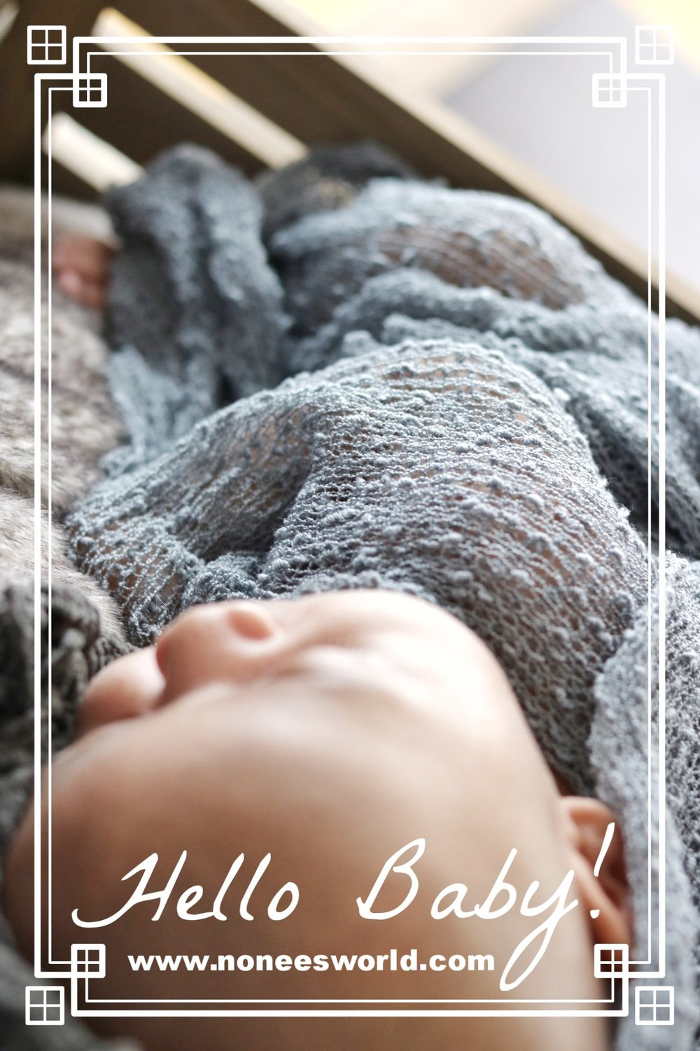 Newborn Photoshoot Ideas