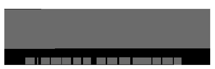Electra-logo-16copy copy.png