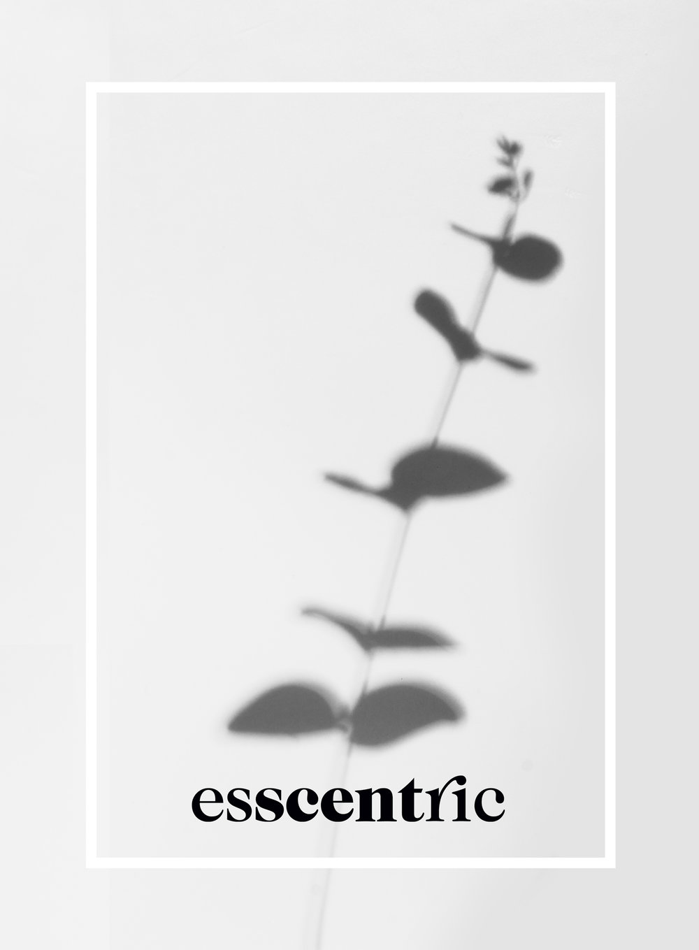 Essentric-06