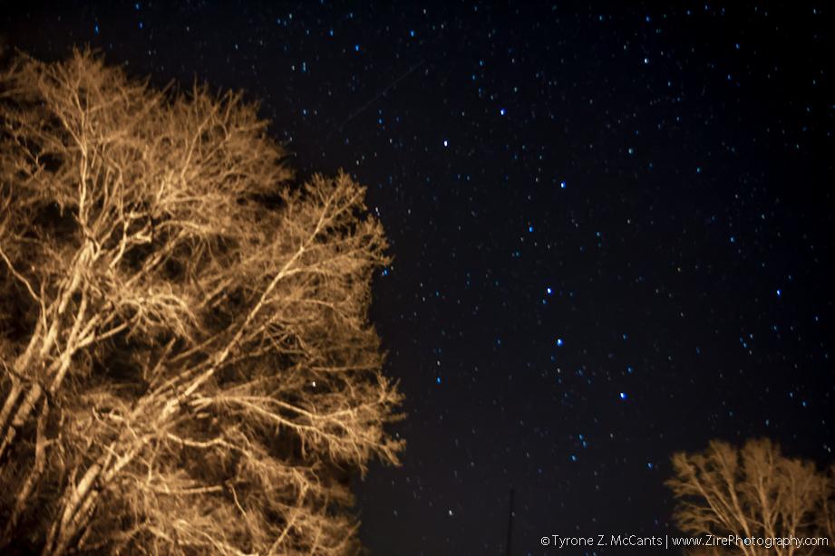 zirephotos_stars_web07.jpg