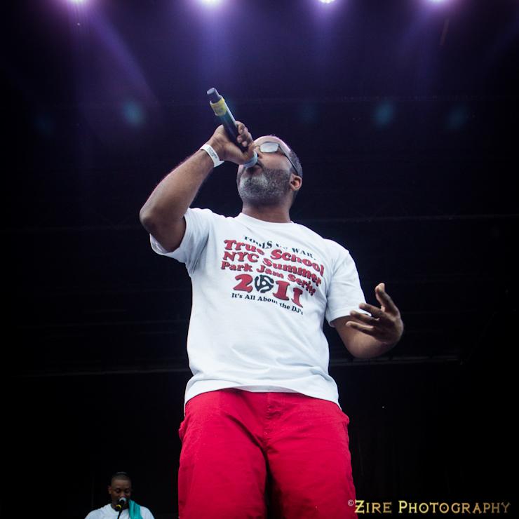 d-i-t-c-summerstage-2014_-16.jpg