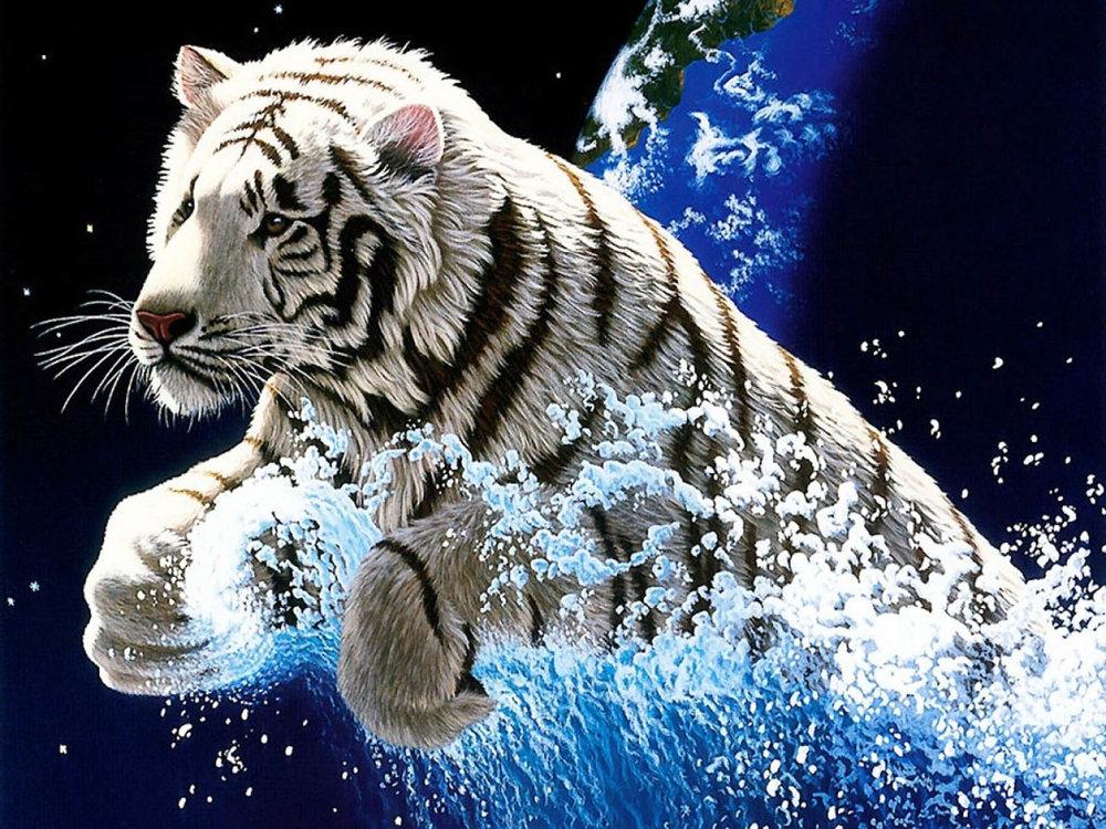 desktop-year-of-the-tiger-images-wallpaper.jpg