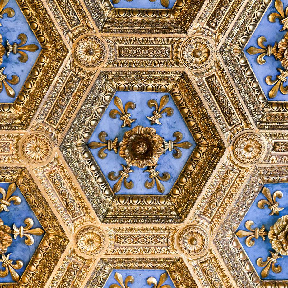 Florence-1010054.jpg