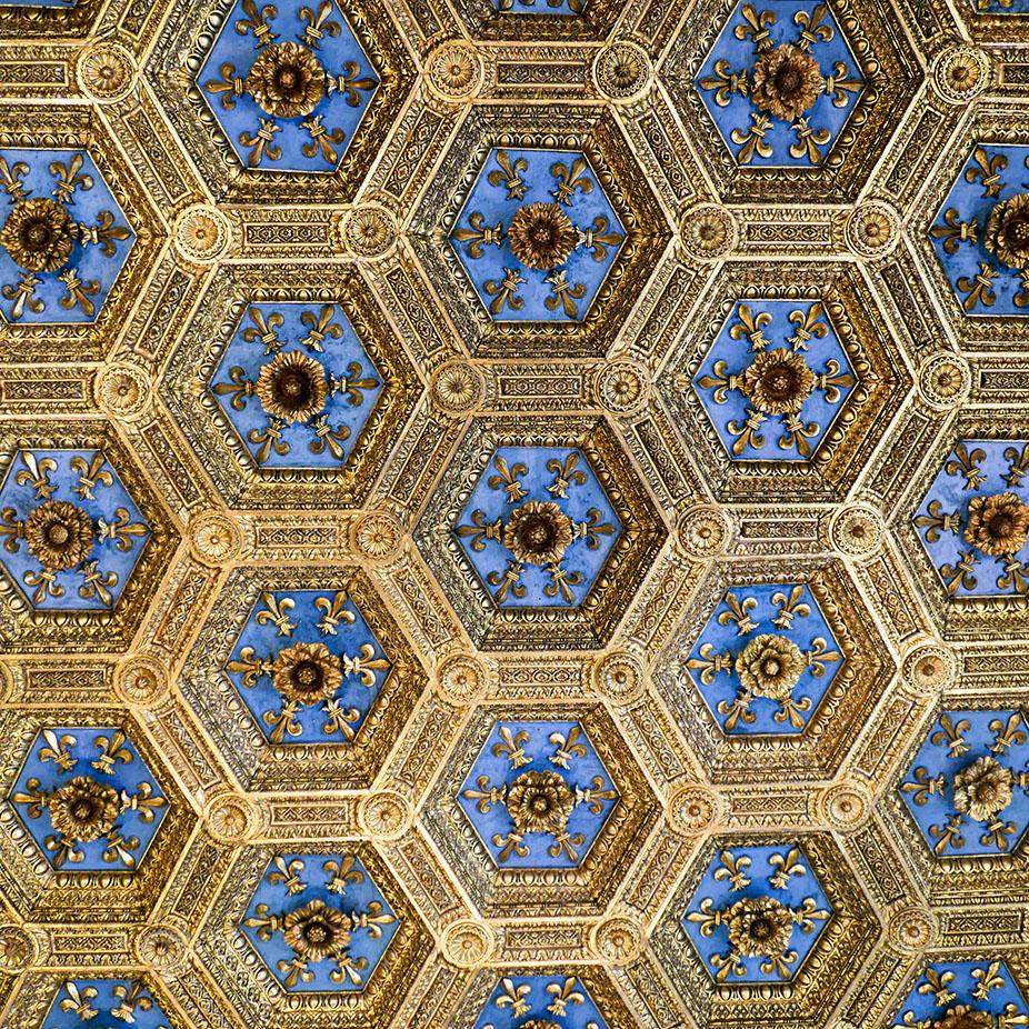 Florence-1010053.jpg