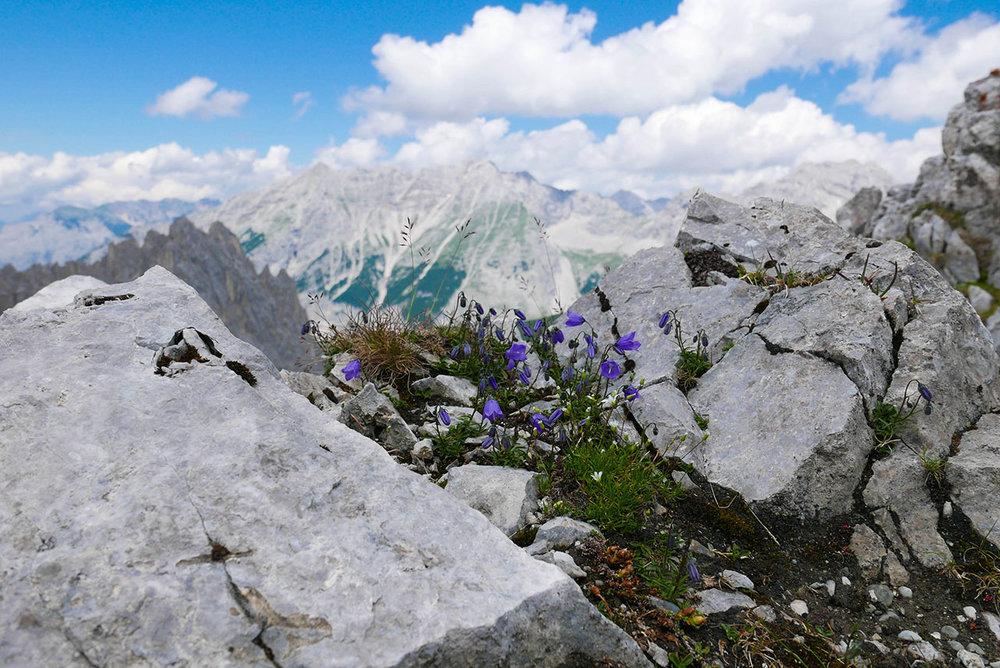 Innsbruck-1030314.jpg