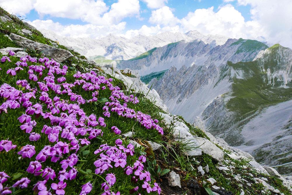 Innsbruck-1030393-2.jpg