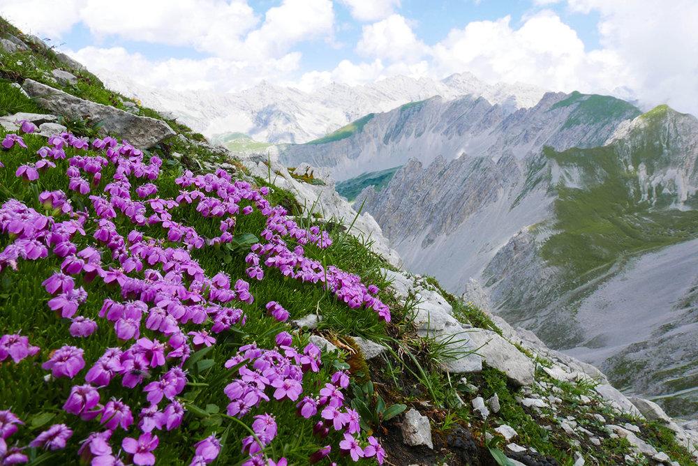 Innsbruck-1030393.jpg