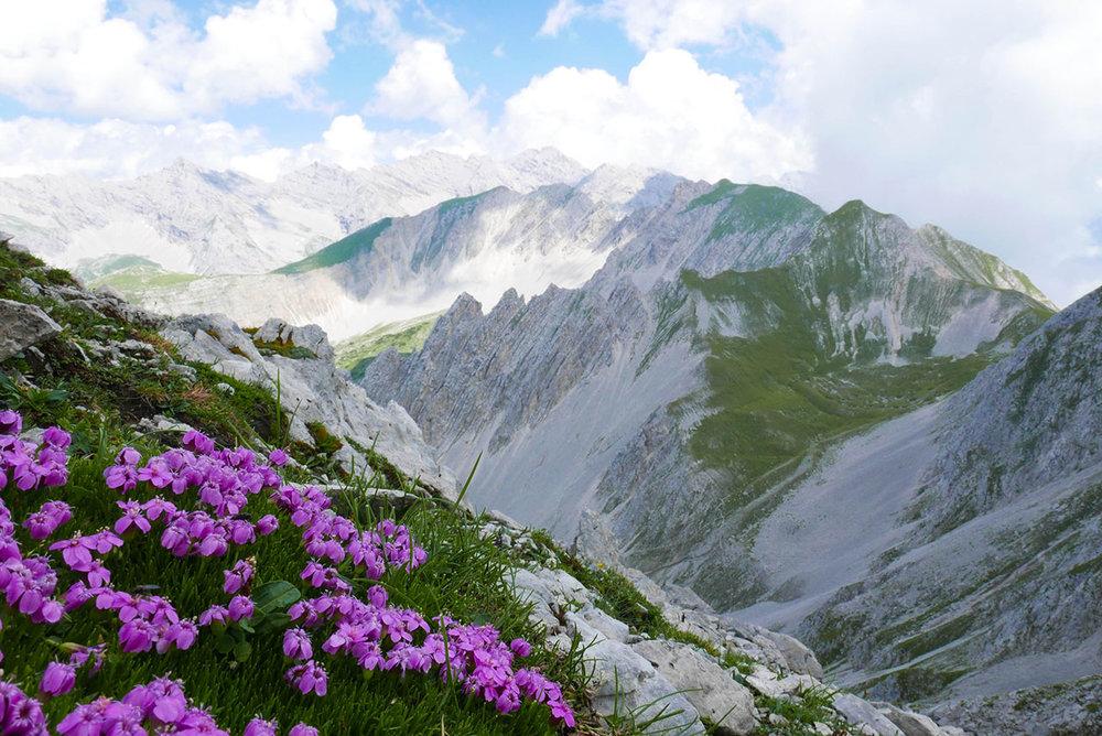 Innsbruck-1030399.jpg