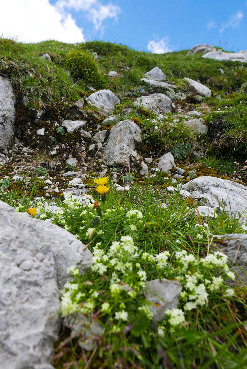 Innsbruck-1030418.jpg