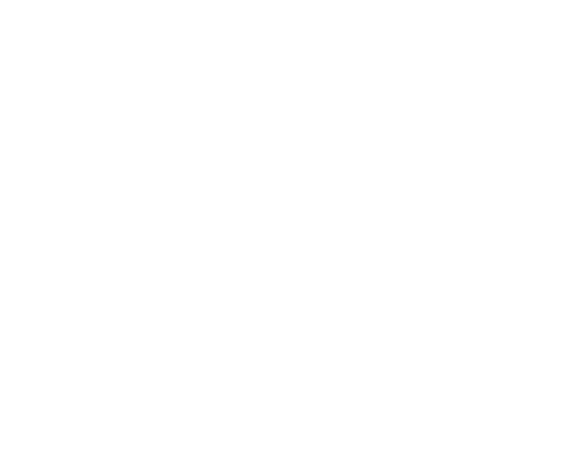 Essential Developer