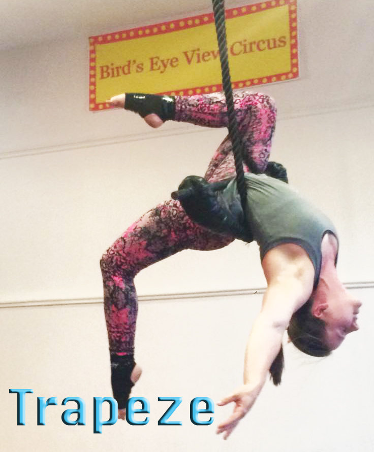 amanda trapeze with logo copy.jpg