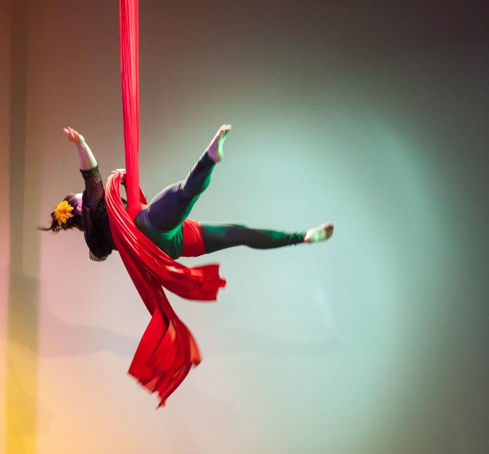 Silks, Trapeze, Lyra, Duo Aerial