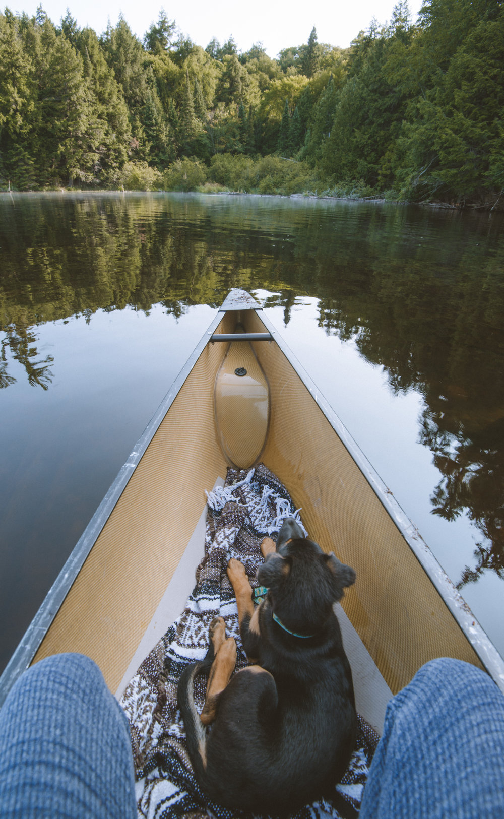 First canoe paddle