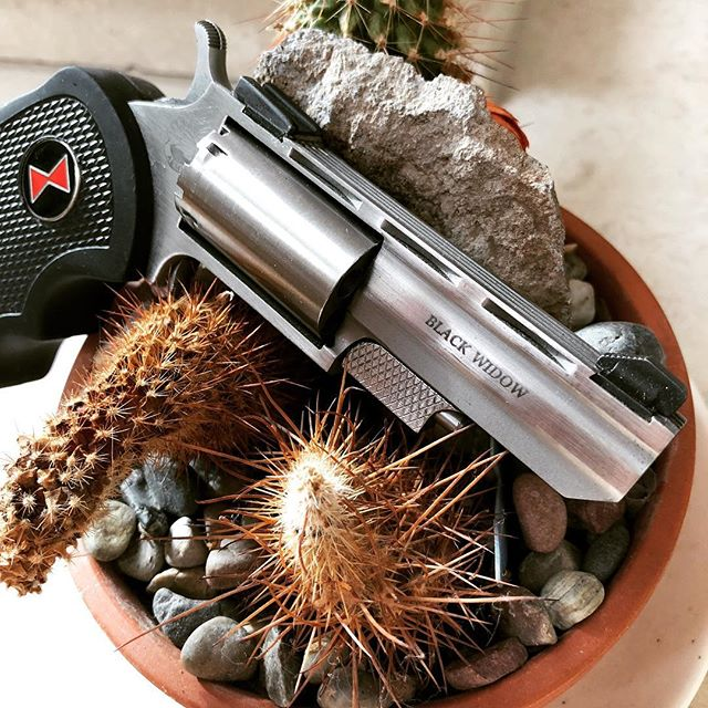 "The ""black widow"" a North American Arms .22 that comes with a extra cylinder to shoot .22 magnum rounds. #northamericanarms #22caliber #22lr #22magnum #blackwidow #cactus #gunporn #2ndammendment #everydaycarry #2a #pewpewlife #igmilitia #weaponsdaily #gunsdaily #edc #gunchannels #ccw #revolver #guns"