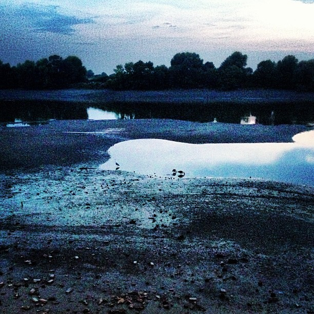 The Thames. #river #water #sunset #london