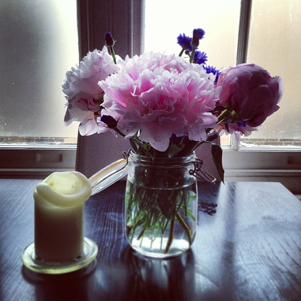 #fridaytreat I've bought myself some cheer-me-up flowers. I love peonies. The cornflowers are pretty too.