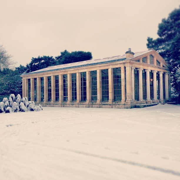 Nash + Nash + snow = beautiful @kewgardens.