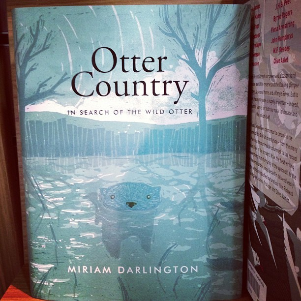 The @dont_wake_me_up cover illustration by Kelly Dyson on this #OtterCountry book is beautiful! #art #illustration #books #inspiration #creativepeeps