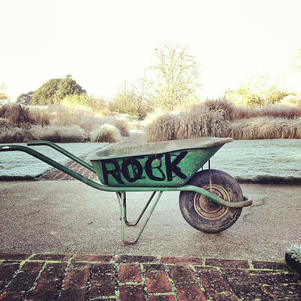 Yes, @kewgardens, you ROCK! Quite literally!
