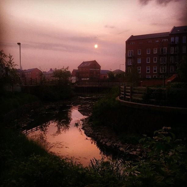 Hello big fan Sun… Or are you Orange, Mr Moon? (Taken with  instagram )