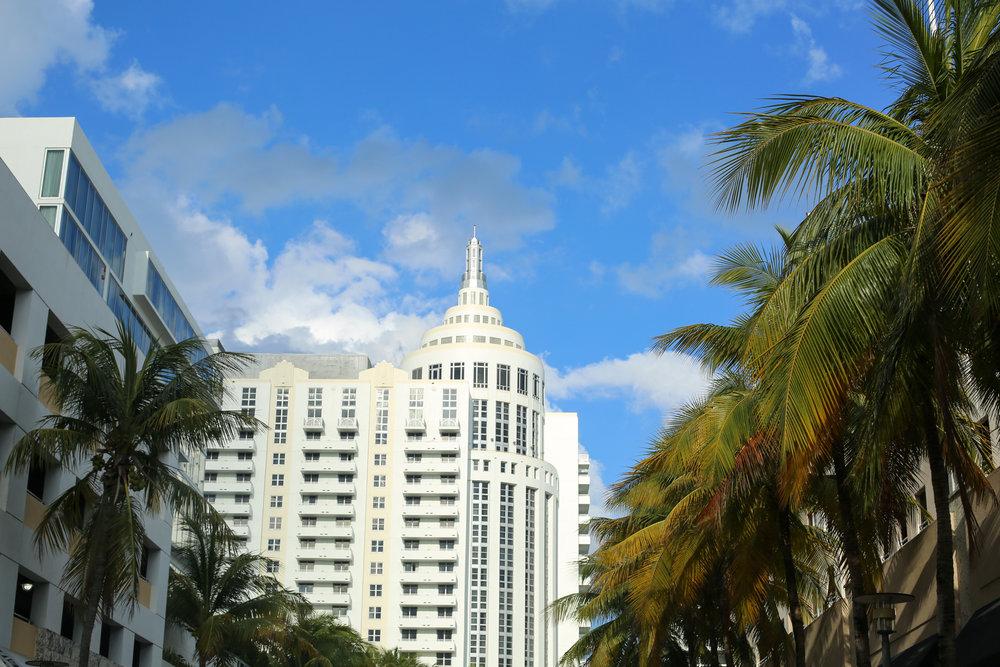 Lucie Loves Miami (6 of 64).jpg