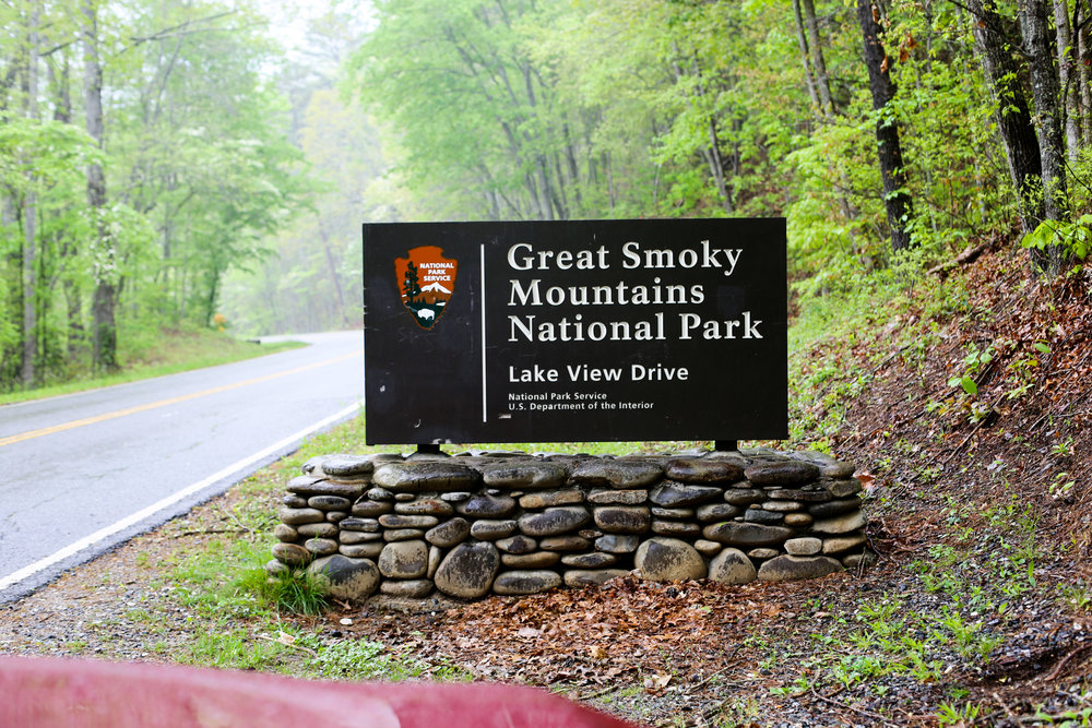 Lucie Loves Great Smoky Mountains (91 of 254).jpg