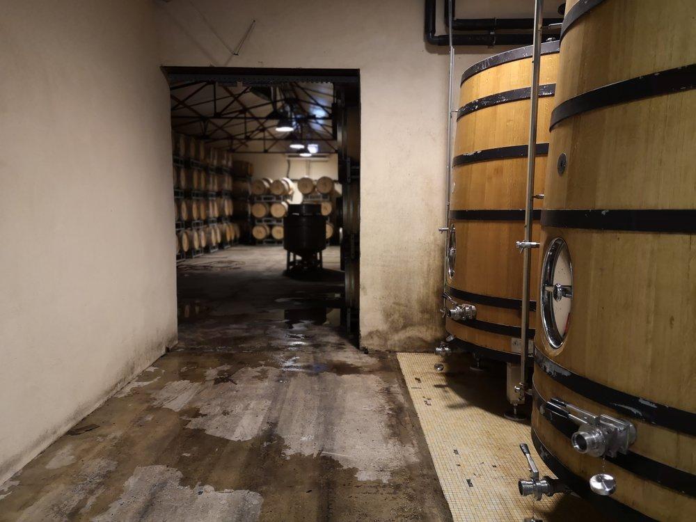 Domaine Paul Mas Winery Tour