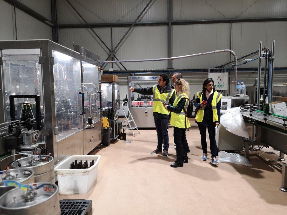 Paul Mas Sparkling Wine Production Tour