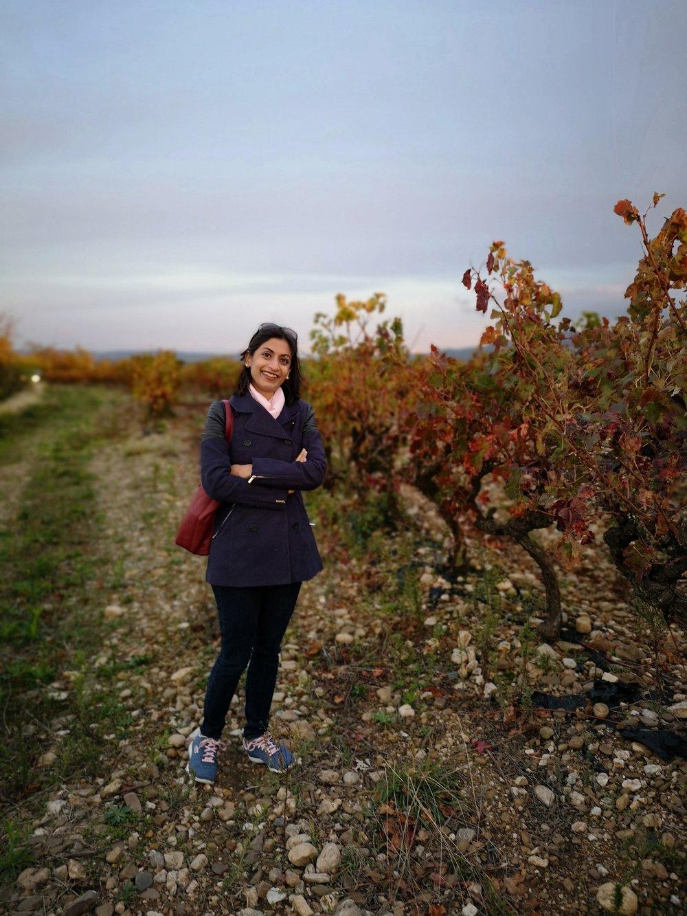 Sumi Sumilier Tasting Wine Journalist