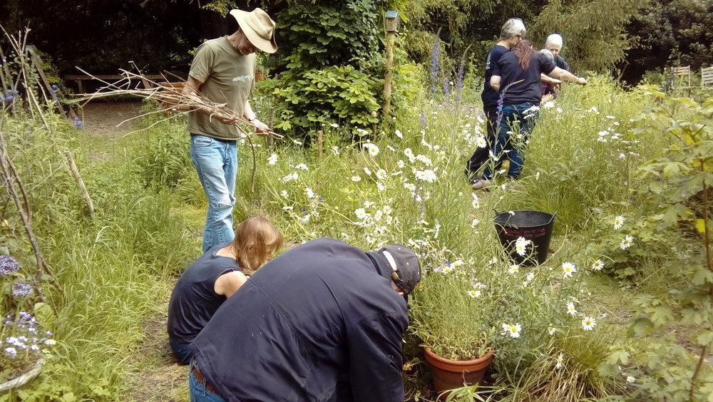 Volunteers jamie et al.jpg