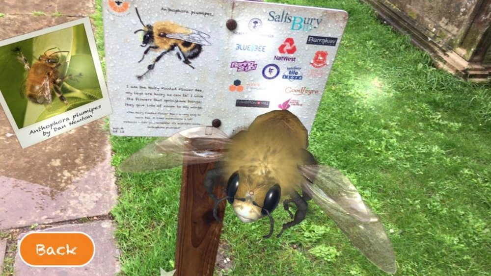 Trigger the AR image by pointing your phone at the sign! 12 signs to find around the city. 12 pollinators to learn about. A map with further info and a list of bee plants!  Get the free App   here  or  here.    We are also delighted to have been awarded a  Wiltshire Life conservation award , in March 2018!