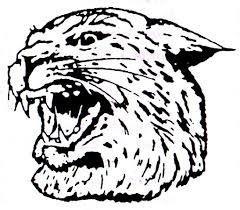 Wildcat_Head.jpg