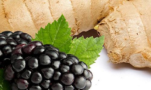 Blackberry<br>Ginger<br>Balsamic