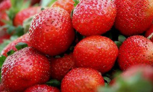 Strawberry<br>Balsamic