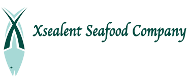Xsealent new logo.png