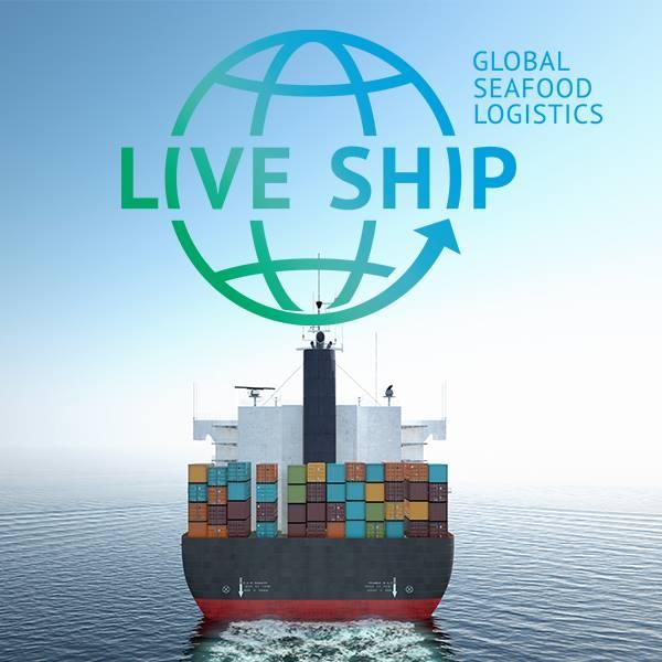 live ship 2.jpg