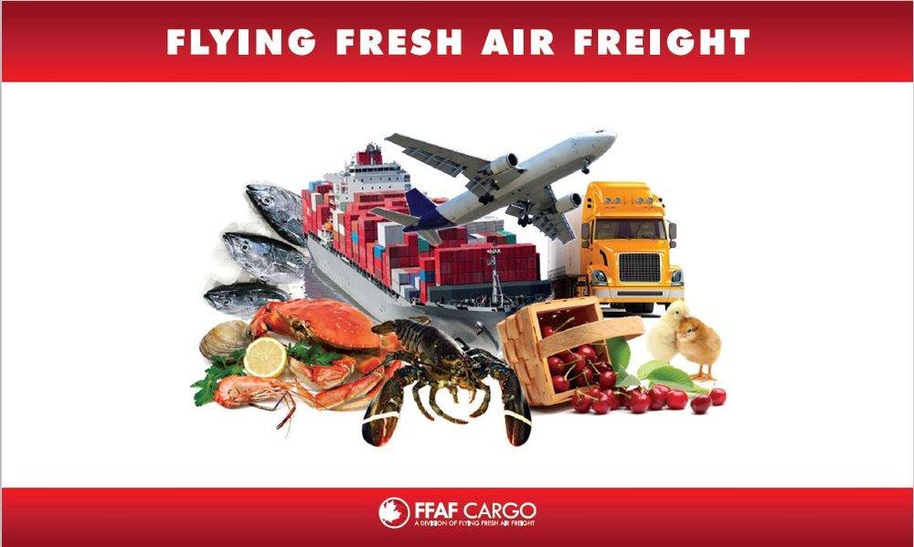 flyinf fresh banner 2.jpg