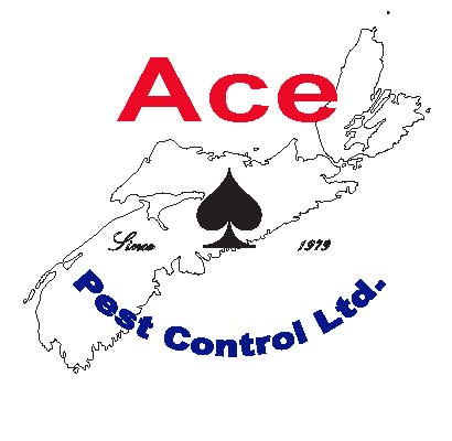 ace pest logo.jpg