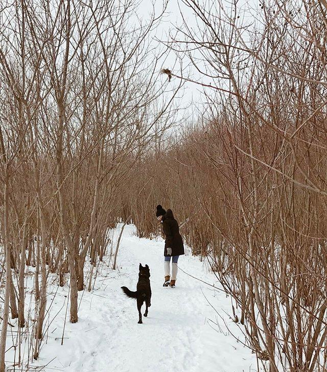 Sunday winter hikes with my besties ❄️