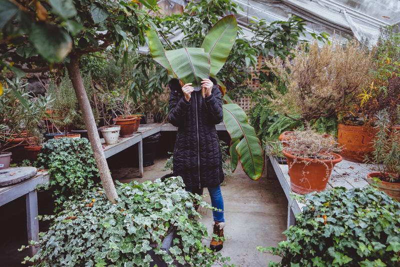 langdon-hall-greenhouse-winter.jpg