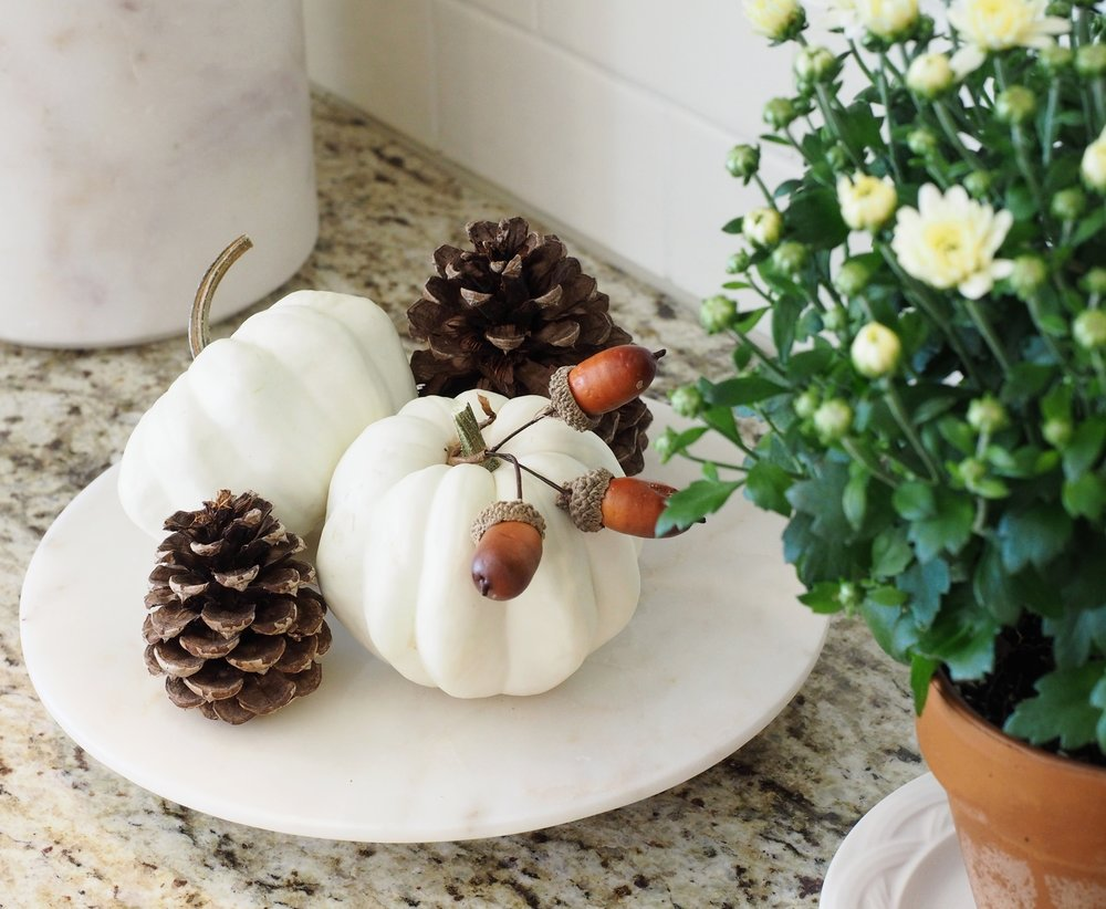 Mini pumpkins, pine cones and acorns set the tone for fall in any space! Large marble canister is from Williams-Sonoma. I love marble products of any kind on my countertops! I think this style of marble looks beautiful mixed with the Giallo Ornamental granite in our kitchen. I've linked a smaller canister  HERE . You can store sugar, spices, dried herbs or nothing at all. They are beautiful pieces to treasure for a lifetime in my opinion!